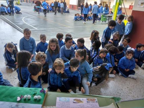 Día de Andalucía 07