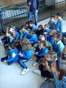Día de Andalucía 10