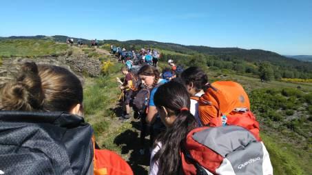 Camino de Santiago 03